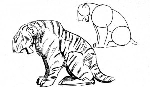 how_to_draw_a_tiger