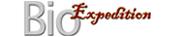 mini_logo_transp