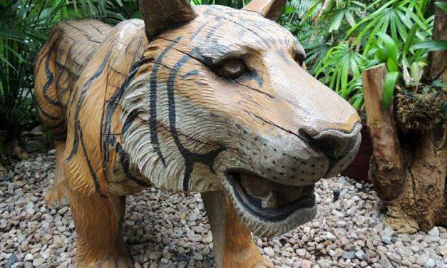 Tigers in Culture